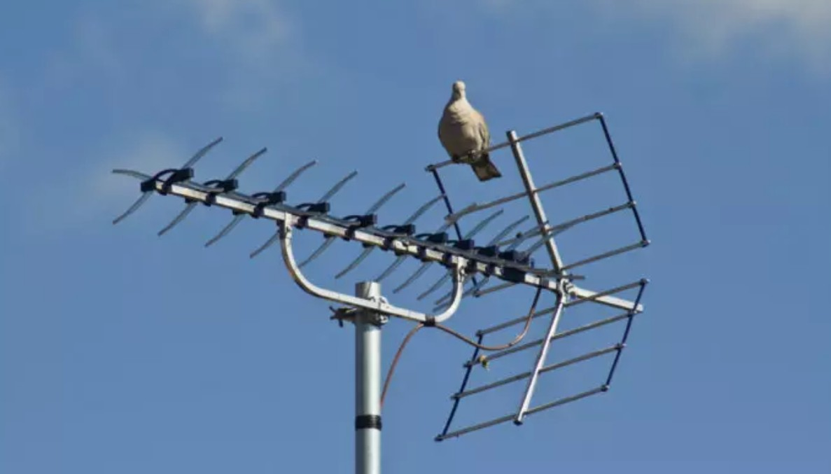 Digital TV Antenna Troubleshooting Guide & Tips