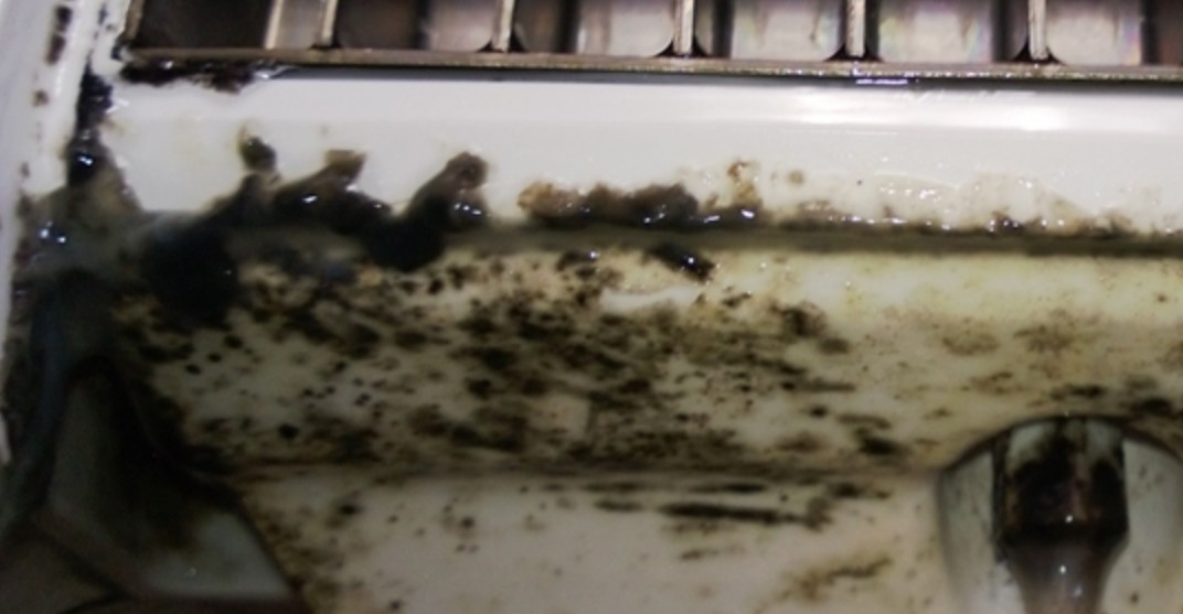 How to Clean Mold from an Ice Maker Dispenser